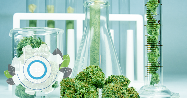Automation for Cannabis Testing Laboratories