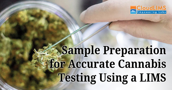Sampling Preparation for Cannabis Testing