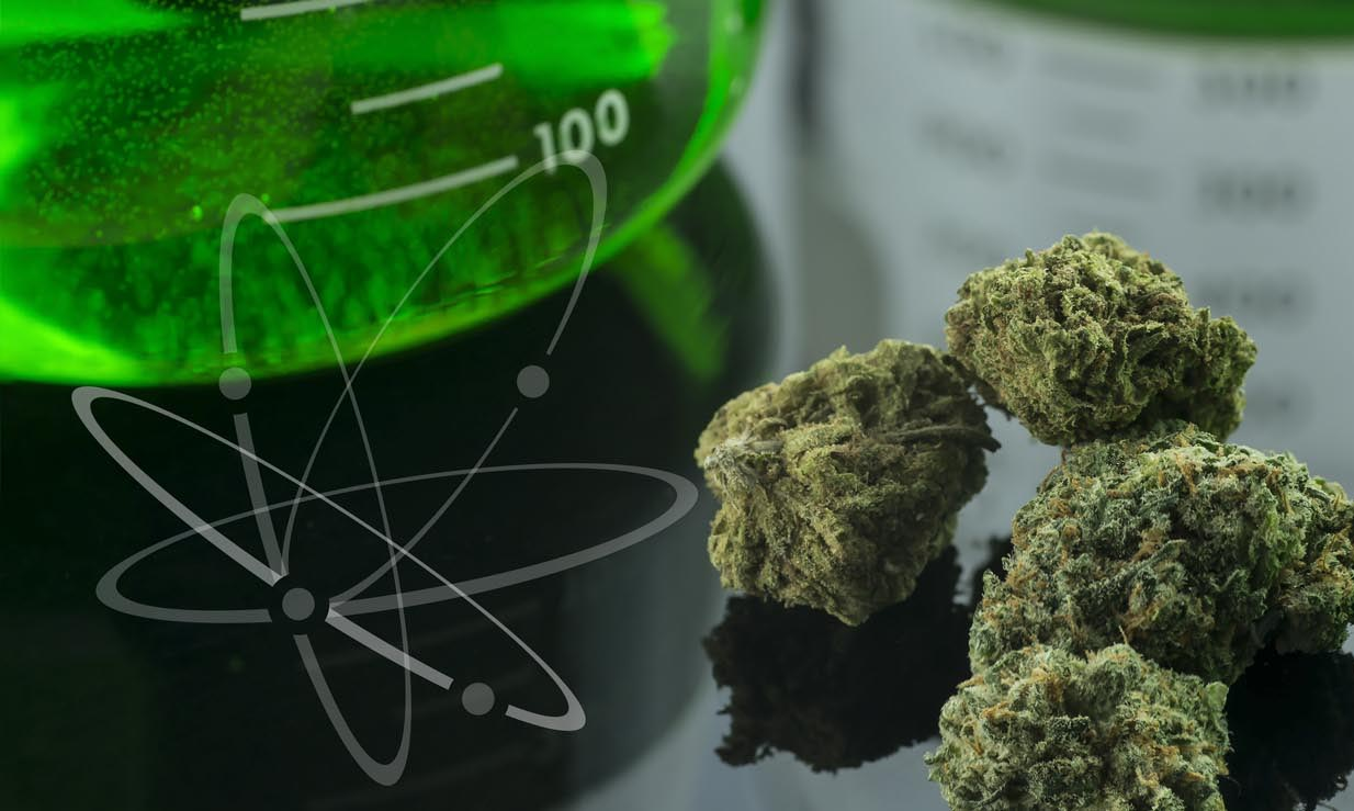 2019 Cannabis Science Conference